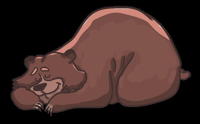 spící medvěd