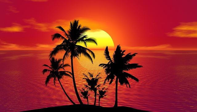 tropický léto
