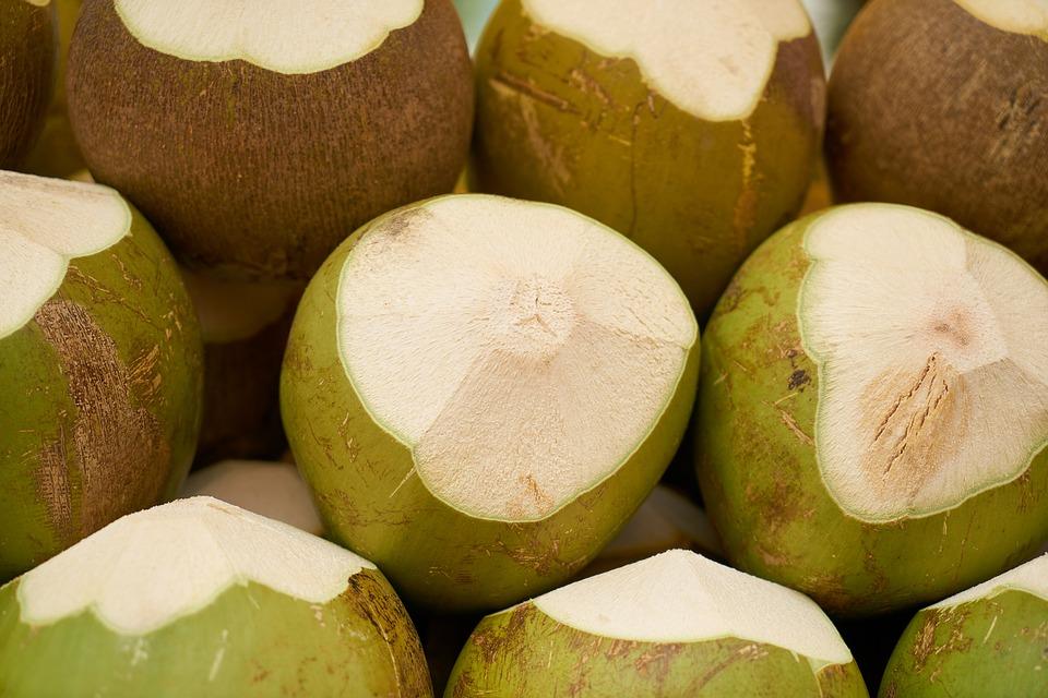 india-coconut-3221935_960_720